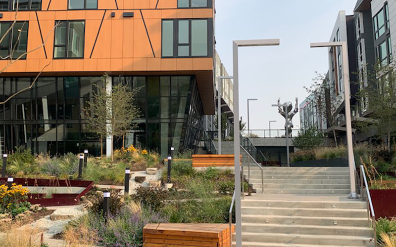 Rushing project - Jackson Apartments